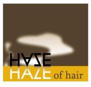 ヘイズの人々の囁き〜在るヘアサロンでの些細な出来事