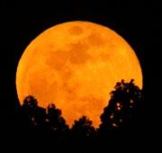 月太陽空写真