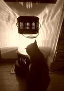 はんぐりー CAT'S♪時々antique