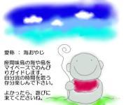 沖縄・慶良間諸島 座間味島 海(かい)の戯言
