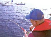 海坊主と越後の海 part3