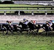 Horse Race Blog(競馬ブログ)