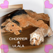 chopper&ulala