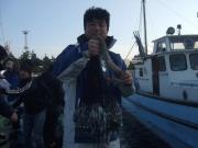 『MFC釣り日記』