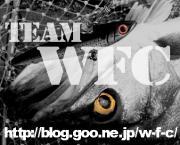 TEAM WFC/能登のソルトゲーム&シーバス