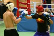 ボクシング日本代表Wファイターズ!