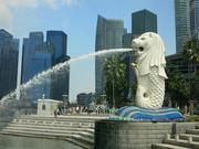 『勤務地シンガポール』