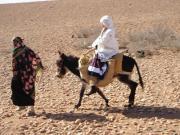 ラクダと旅する日常