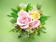 不思議な花のアリスのプリザーブドフラワーギャラリー
