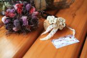 sucre et tricoter