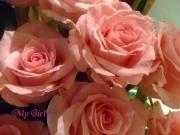 Maffy La Vie En Rose