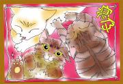 a round the cat's〜我が家は猫で回ってる〜