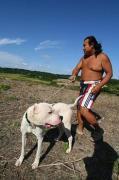 大型犬施設の訓練ブログ