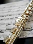 フルート奏者の動画検索サイト