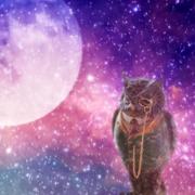 育児の悩みを占星術で解決する