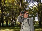 森林インストラクター豊島襄のフィールドノート