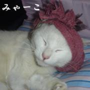 絆 ブログ in 富士山のアトリエより