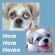 Hem Hem Home