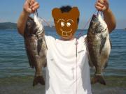 ビーバー一家今日も漁へ行く