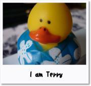 terry's room