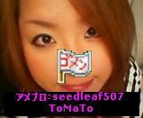 seed leaf~慢性リンパ性白血病~