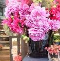Muguet 銀座 *フレンチスタイル花装飾と美しい時間*