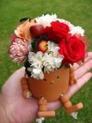 〜Baby Rose〜 の花ブログ ♪