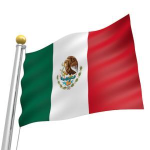 メキシコペソスワップで月100万の不労所得を目指す