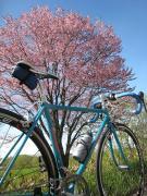自転車に魅せられて from  釧路湿原とうろ