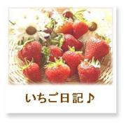 いちご日記 〜my story♪〜