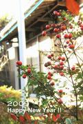 湘南lifeに憧れる関西人のブログ