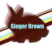 GingerBrownのBLOG