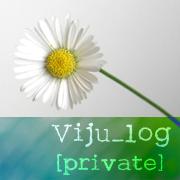 Viju_log::グラフィックデザイナーの経営者的日々::