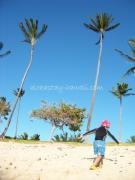 Hawaiian LOHAS