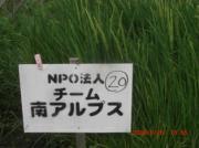NPO法人チーム南アルプス