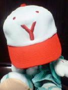 横浜の少年野球チーム、リトルリーグ大好き