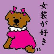 新・Happy Chappy