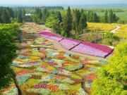 くじゅう花公園スタッフブログ