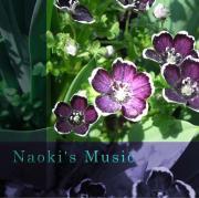 Naoki の ヒーリングミュージック