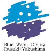 屋久島ダイビングサ−ビスブルーウォーター