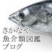 さかなや魚介類図鑑ブログ