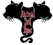 にゃんこ集団生活@Animal 3rd Eyes