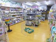 ペットのデパート東葛本店 鳥・小動物ブログ