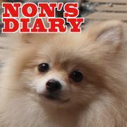 のんさま日記 hyper