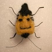 虎猫:マクロレンズで花・昆虫・猫を撮っています。