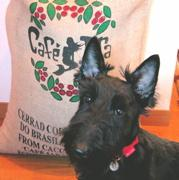 Cafetierと看板犬モッピーのblog