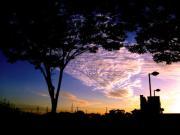 くげフォト〜湘南・鵠沼海岸の写真〜