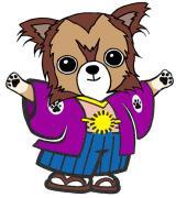 犬グッズ専門店チワワ通販部〜犬猫モチーフグッズ