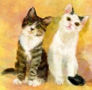 猫とハグ。