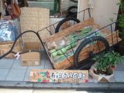 無農薬有機野菜の八百屋 やおかん